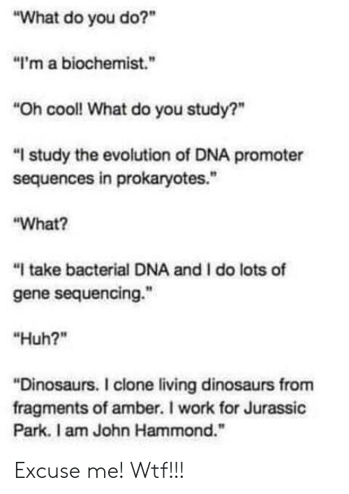 """Jurassic Park: """"What do you do?""""  """"I'm a biochemist.  """"Oh cool! What do you study?""""  """"I study the evolution of DNA promoter  sequences in prokaryotes.""""  """"What?  """"I take bacterial DNA and I do lots of  gene sequencing.""""  """"Huh?""""  Dinosaurs. I clone living dinosaurs fronm  fragments of amber. I work for Jurassic  Park. I am John Hammond."""" Excuse me! Wtf!!!"""