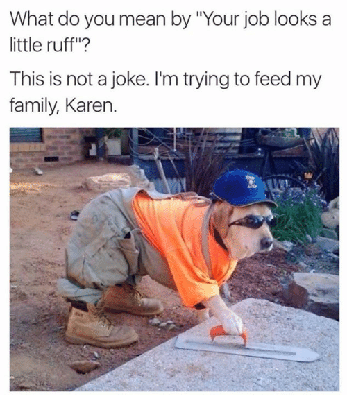 """Family, Memes, and Jobs: What do you mean by Our job looks a  little ruff""""?  This is not a joke. I'm trying to feed my  family, Karen"""