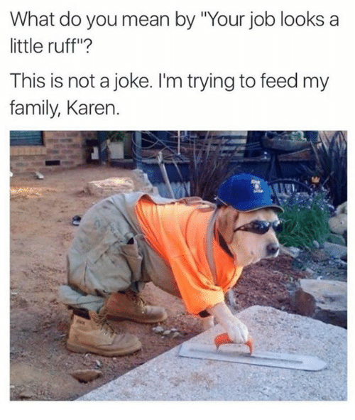 """Family, Memes, and Jobs: What do you mean by 'Your job looks a  little ruff""""?  This is not a joke. I'm trying to feed my  family, Karen."""