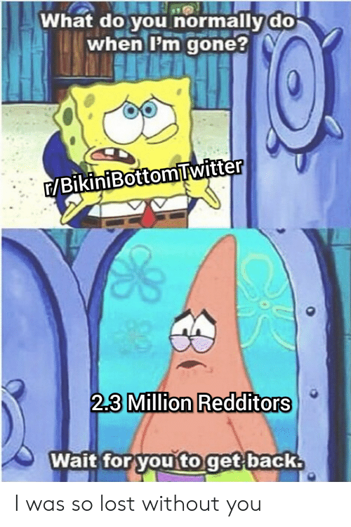 lost without you: What do you normally do  when I'm gone?  E/BikiniBottomTwitter  2.3 Million Redditors  Wait for you to get back I was so lost without you