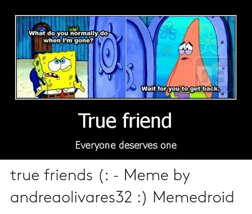 True Friends Meme: What do you normally do  when I'm gone?  Wait for you'to get back.  True friend  Everyone deserves one true friends (: - Meme by andreaolivares32 :) Memedroid