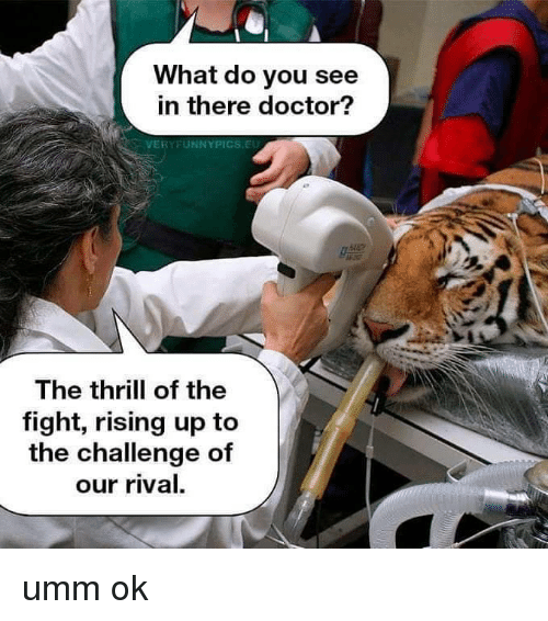 the challenge: What do you see  in there doctor?  VERYFUNNYPICS.EU  082  The thrill of the  fight, rising up to  the challenge of  our rival. umm ok