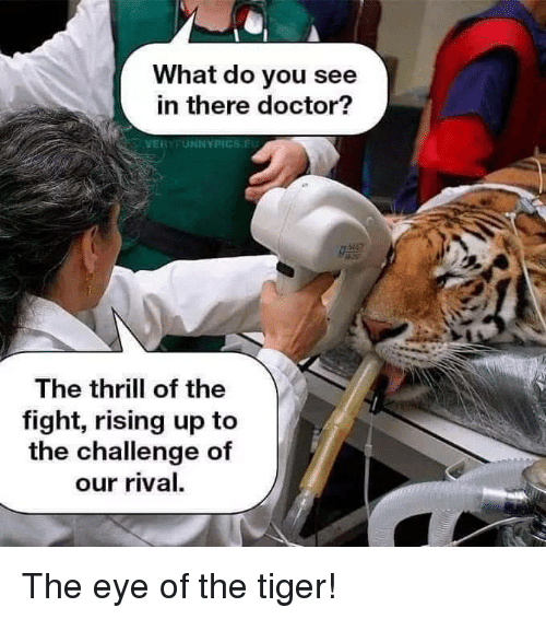 the challenge: What do you see  in there doctor?  VERYFUNNYPICS.EU  The thrill of the  fight, rising up to  the challenge of  our rival. The eye of the tiger!