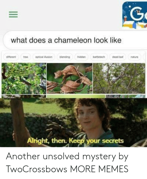unsolved: what does a chameleon look like  dinerent troo optical iusion blending hidden battletoch dead at nature  ht, then  your secrets Another unsolved mystery by TwoCrossbows MORE MEMES