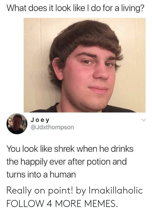 What Does It Look Like I Do For A Living: What does it look like I do for a living?  Joey  @Jdxthompson  You look like shrek when he drinks  the happily ever after potion and  turns into a human Really on point! by Imakillaholic FOLLOW 4 MORE MEMES.