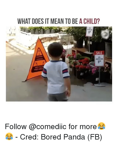 cred: WHAT DOES IT MEAN TO BE A CHILD?  AZALE  SALE  CAUTION  #2  AZALEA  59  WET FLO  PISO MOJ Follow @comediic for more😂😂 - Cred: Bored Panda (FB)
