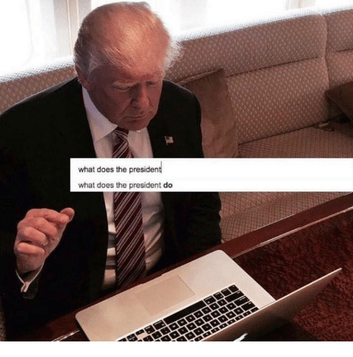 What Does The President Do: what does the president  what does the president do