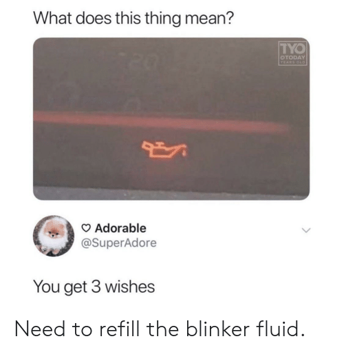 Blinker Fluid: What does this thing mean?  TYO  OTODAY  YEARS OLD  Adorable  @SuperAdore  You get 3 wishes Need to refill the blinker fluid.