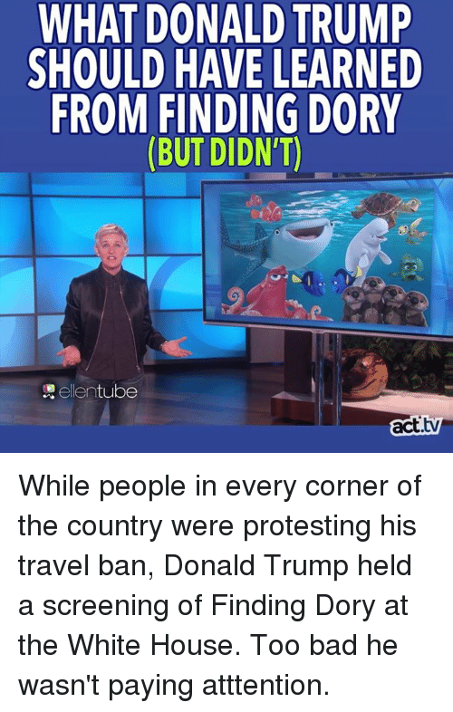 white houses: WHAT DONALD TRUMP  SHOULD HAVE LEARNED  FROM FINDING DORY  tube  ellen  act While people in every corner of the country were protesting his travel ban, Donald Trump held a screening of Finding Dory at the White House. Too bad he wasn't paying atttention.