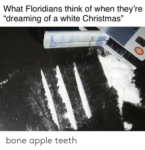 """Bone Apple Teeth: What Floridians think of when they're  """"dreaming of a white Christmas""""  814. bone apple teeth"""