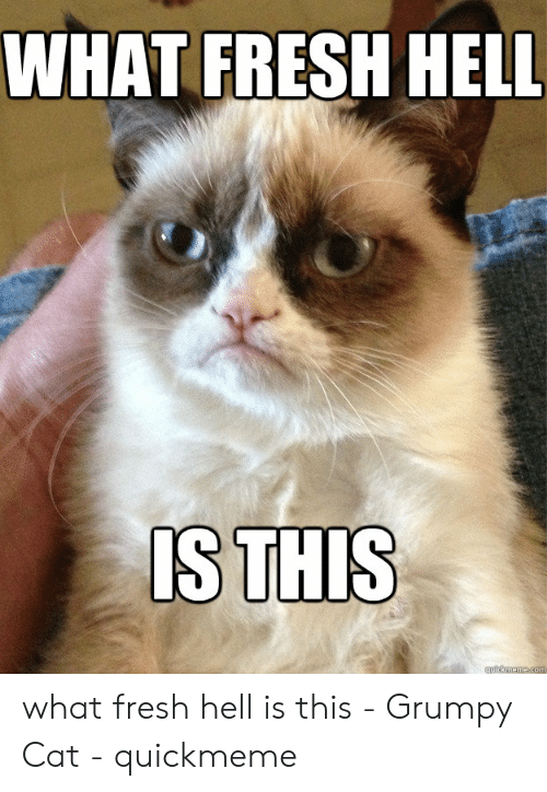 What The Hell Meme: WHAT FRESH HELL  S THIS what fresh hell is this - Grumpy Cat - quickmeme