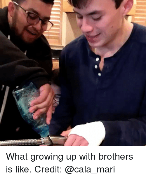 Growing Up, Memes, and 🤖: What growing up with brothers is like. Credit: @cala_mari
