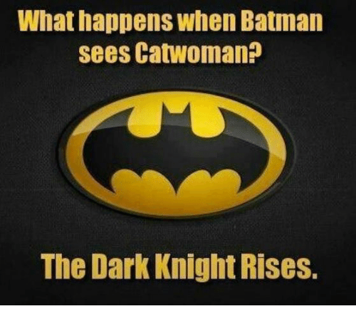 Batman, Memes, and The Dark Knight: What happens when Batman  sees Catwoman?  The Dark Knight Rises.