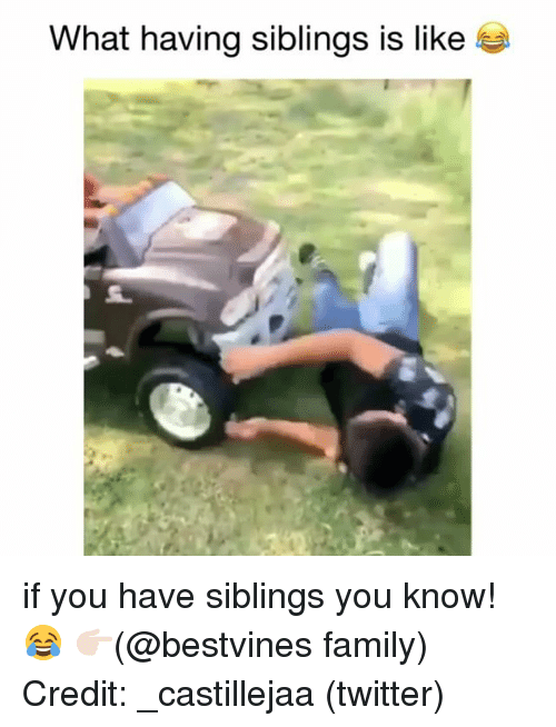 Family, Memes, and Twitter: What having siblings is like if you have siblings you know! 😂 👉🏻(@bestvines family) Credit: _castillejaa (twitter)