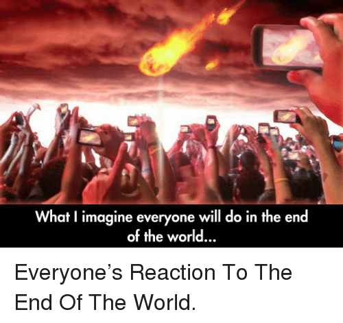 what i imagine: What I imagine everyone will do in the end  of the world.., <p>Everyone's Reaction To The End Of The World.</p>