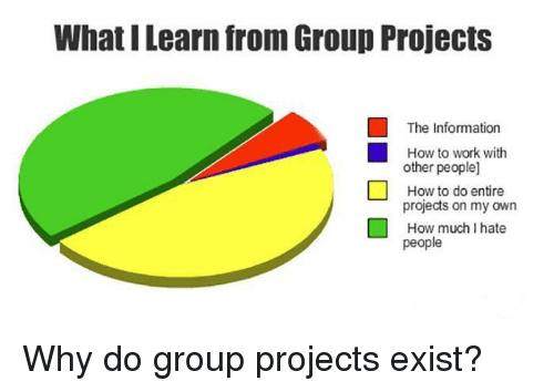 Group Projects: What I Learn from Group Projects  The Information  How to work with  other people]  How to do entire  projects on my own  How much I hate  people Why do group projects exist?