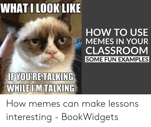 Meme Examples: WHAT I LOOK LIKE  HOW TO USE  MEMES IN YOUR  CLASSROOM  SOME FUN EXAMPLES  IFYOU'RE TALKING  WHILEI'M TALKING How memes can make lessons interesting - BookWidgets