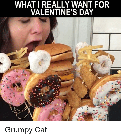 Happy Valentines Day Meme With Cats