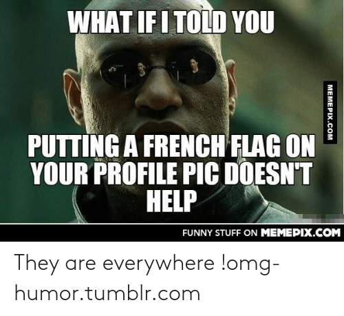 Funny, Omg, and Tumblr: WHAT IF I TOLD YOU  PUTTING A FRENCH FLAG ON  YOUR PROFILE PIC DOESN'T  HELP  FUNNY STUFF ON MEMEPIX.COM  MEMEPIX.COM They are everywhere !omg-humor.tumblr.com