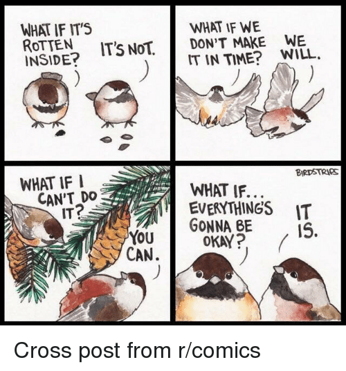 Cross, Okay, and Time: WHAT IF ITS  ROTTEN IT'S NoT.  INSIDE?  WHAT IF WE  DON'T MAKE WE  IT IN TIME? WILL.  WHAT IF I  BIRDSTRIeS  CAN'T DO  ITP  WHAT IF..  EVERYTHINGS IT  Yu GONNA BE  OKAY? (  CAN. Cross post from r/comics