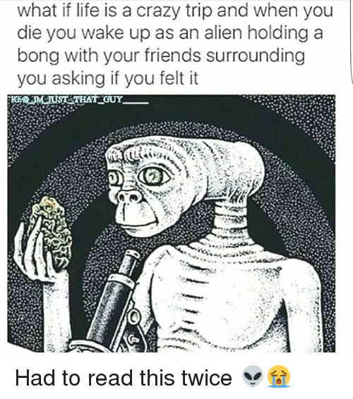 tripped: what if life is a crazy trip and when you  die you wake up as an alien holding a  bong with your friends surrounding  you asking if you felt it  JMIUST THAT GUY. Had to read this twice 👽😭