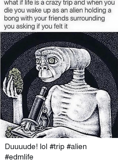 Crazy, Friends, and Life: What if life is a crazy trip and When you  die you wake up as an alien holding a  bong with your friends surrounding  you asking if you felt it Duuuude! lol #trip #alien #edmlife