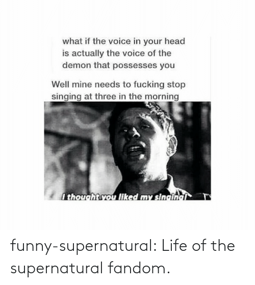 Supernatural Fandom: what if the voice in your head  is actually the voice of the  demon that possesses you  Well mine needs to fucking stop  singing at three in the morning  I thoughtsvou liked my sincinci funny-supernatural:  Life of the supernatural fandom.