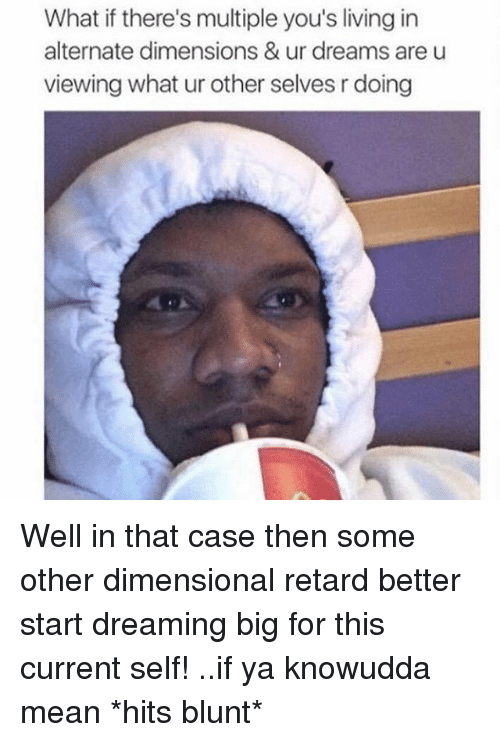 Retardism: What if there's multiple you's living in  alternate dimensions & ur dreams are u  viewing what ur other selves rdoing Well in that case then some other dimensional retard better start dreaming big for this current self! ..if ya knowudda mean *hits blunt*