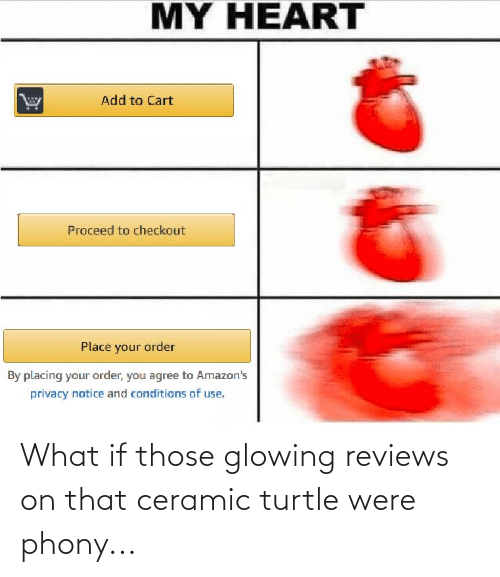 glowing: What if those glowing reviews on that ceramic turtle were phony...