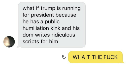 Trump: what if trump is running  for president because  he has a public  humiliation kink and his  dom writes ridiculous  scripts for him  R  WHA T THE FUCK