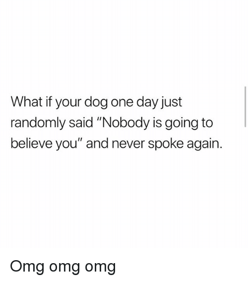 "Memes, Omg, and Never: What if your dog one day just  randomly said ""Nobody is going to  believe you"" and never spoke again. Omg omg omg"