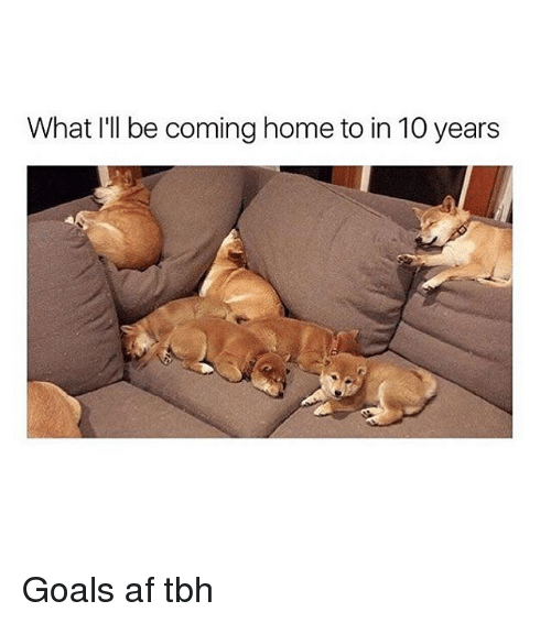 Af, Goals, and Memes: What I'll be coming home to in 10 years Goals af tbh