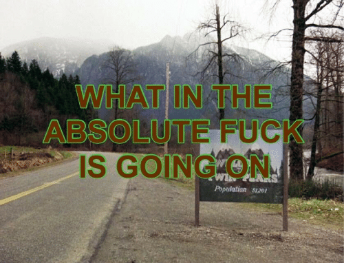 absolut: WHAT IN THE  E FUC  IS GOINGTON  ABSOLUT  Population 51201