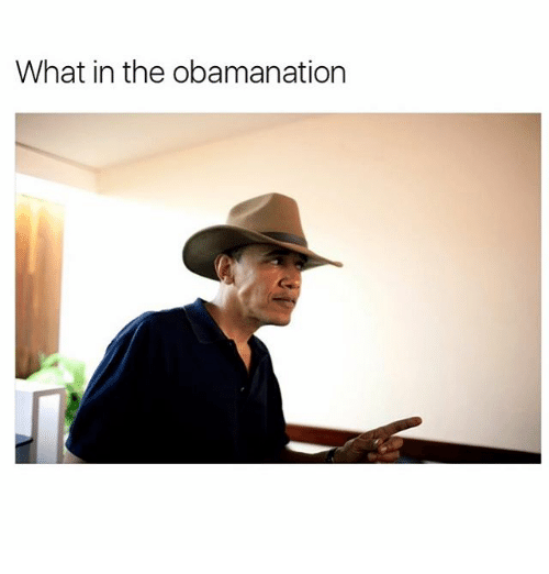 Funny: What in the obamanation