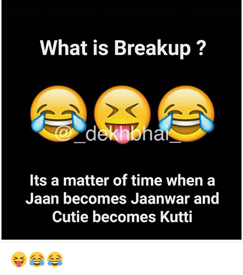 Dekh Bhai, International, and Kutty: What is Breakup?  at  Its a matter of time when a  Jaan becomes Jaanwar and  Cutie becomes Kutti 😝😂😂
