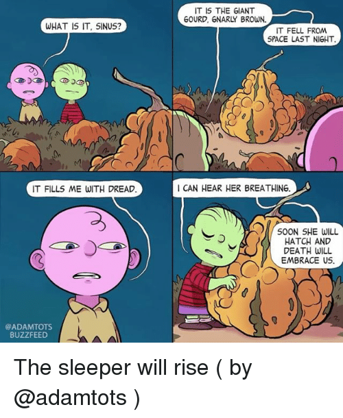sleepers: WHAT IS IT, SINUS?  IT FILL5 ME WITH DREAD.  @ADAM TOTS.  BUZZFEED  IT IS THE GIANT  GOURD, GNARLY BROWN.  IT FELL FROM  SPACE LAST NIGHT.  CAN HEAR HER BREATHING.  SOON SHE WILL  HATCH AND  DEATH WILL  EMBRACE US The sleeper will rise ( by @adamtots )