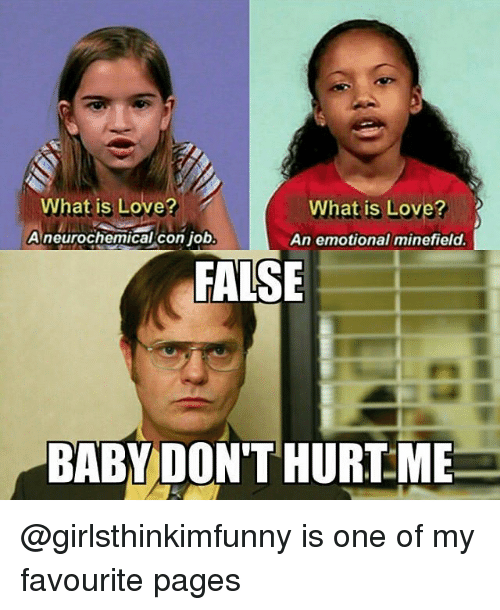 Memes, Jobs, and What Is: What is Love?  What is Love?  A neurochemical con job  An emotional minefield.  FALSE  BABY DON'T HURT ME @girlsthinkimfunny is one of my favourite pages