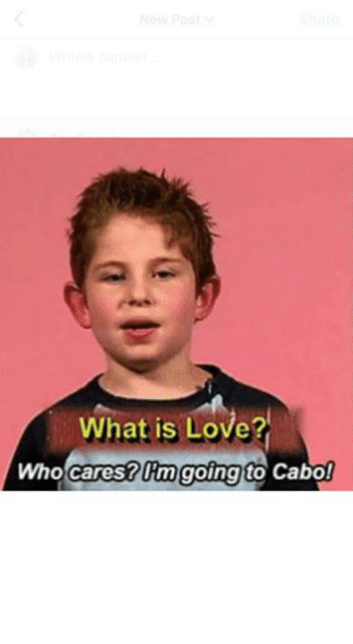 Love, What Is, and What Is Love: What is Love?  Who cares? Um going  Cabo!  to