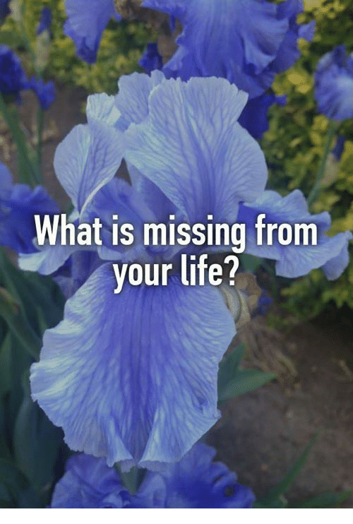 what is missing in your life What's missing in your life sometimes it's all in the way your phrase the question.
