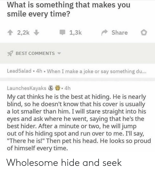 """hide and seek: What is something that makes you  smile every time?  會2,2k  *  1.3k-> Share  BEST COMMENTS  Lead5alad 4h When I make a joke or say something du...  LaunchesKayaks ⑤  . 4h  My cat thinks he is the best at hiding. He is nearly  blind, so he doesn't know that his cover is usually  a lot smaller than him. I will stare straight into his  eyes and ask where he went, saying that he's the  best hider. After a minute or two, he will jump  out of his hiding spot and run over to me. I'll say,  """"There he is!"""" Then pet his head. He looks so proud  of himself every time. Wholesome hide and seek"""