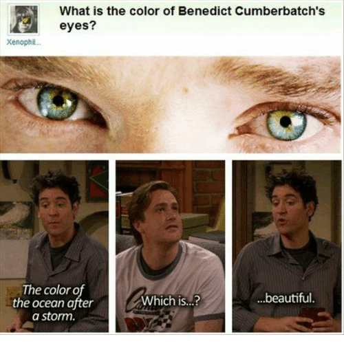 Benedicted: What is the color of Benedict Cumberbatch's  Xenophil..  The color o  the ocean after  a storm  Which is...?  ...beautiful.