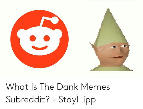 Where To Find Dank Memes: What Is The Dank Memes Subreddit? - StayHipp