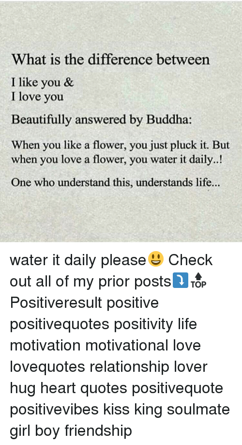Memes, Buddha, and 🤖: What is the difference between  I like you &  I love you  Beautifully answered by Buddha  When you like a flower, you just pluck it. But  when you love a flower, you water it daily..!  One who understand this, understands life... water it daily please😃 Check out all of my prior posts⤵🔝 Positiveresult positive positivequotes positivity life motivation motivational love lovequotes relationship lover hug heart quotes positivequote positivevibes kiss king soulmate girl boy friendship