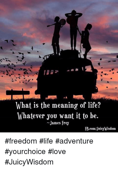meaning of life and freedom