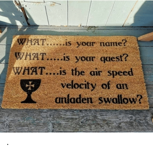 what is your name: WHAT,..is your name?  WHAT.....is your qaest?  WHAT....is the air speed  velocity of an  anladen swallow? .