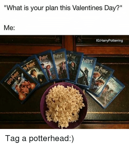 "Memes, Valentine's Day, and What Is: ""What is your plan this Valentines Day?""  Me:  IG:Harry Potterring Tag a potterhead:)"