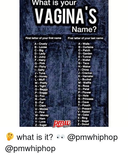 Funny Names For Pussy 34