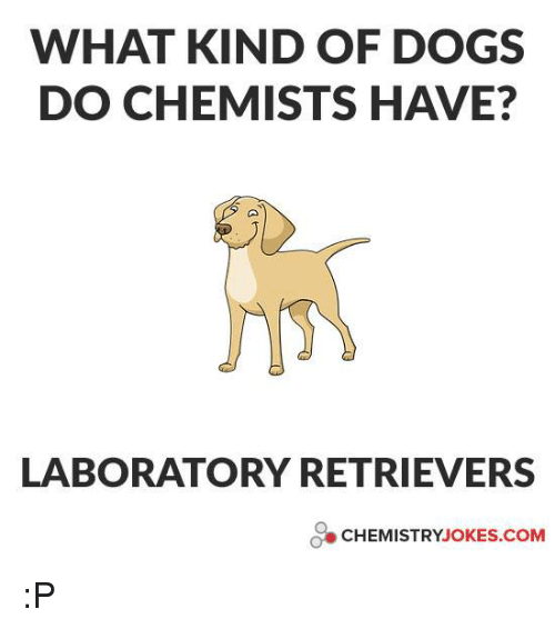 chemistry jokes: WHAT KIND OF DOGS  DO CHEMISTS HAVE?  LABORATORY RETRIEVERS  CHEMISTRY JOKES COM :P