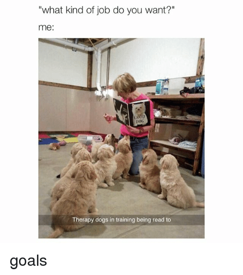 "Girl Memes: ""what kind of job do you want?""  me  00D  Therapy dogs in training being read to goals"
