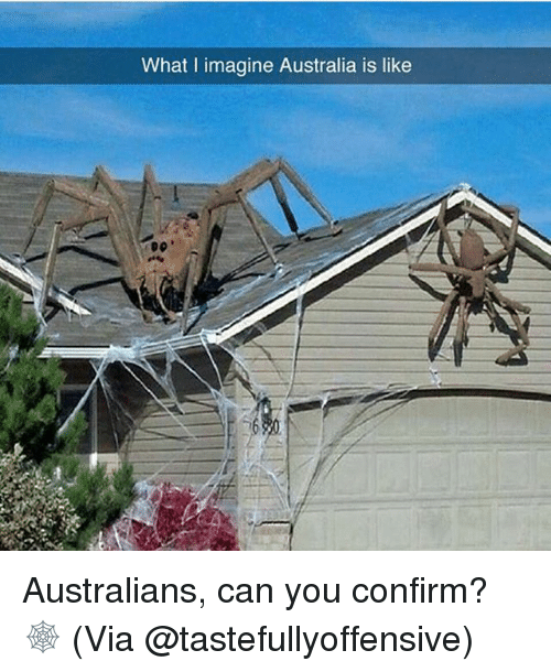 Memes, Australia, and 🤖: What l imagine Australia is like Australians, can you confirm? 🕸 (Via @tastefullyoffensive)